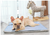 Self Cooling™ pad bed - frenchie Shop