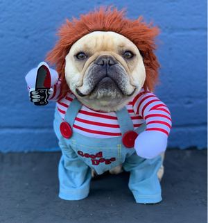 Chucky Costume For Halloween (WS44) - frenchie Shop