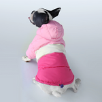 Winter Coat Waterproof Coat for French Bulldog (CS032) - Frenchie Bulldog Shop