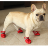 Warm Boots for frenchies (WS29)