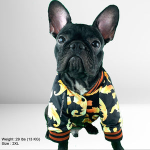 Golden Jacket for Frenchie (WS48) - Frenchie Bulldog Shop
