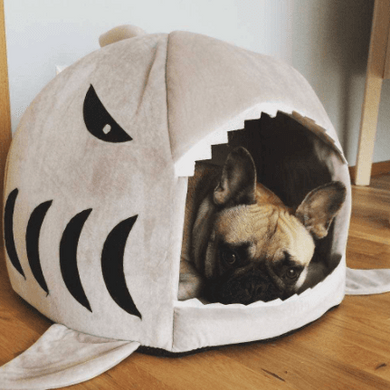 House for frenchie (shark Bed)