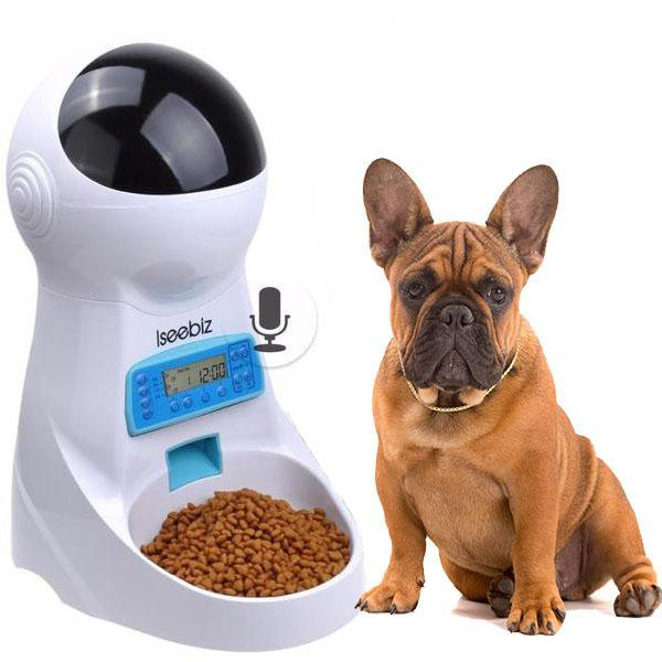 Smart  Frenchie Food Feeder - frenchie Shop