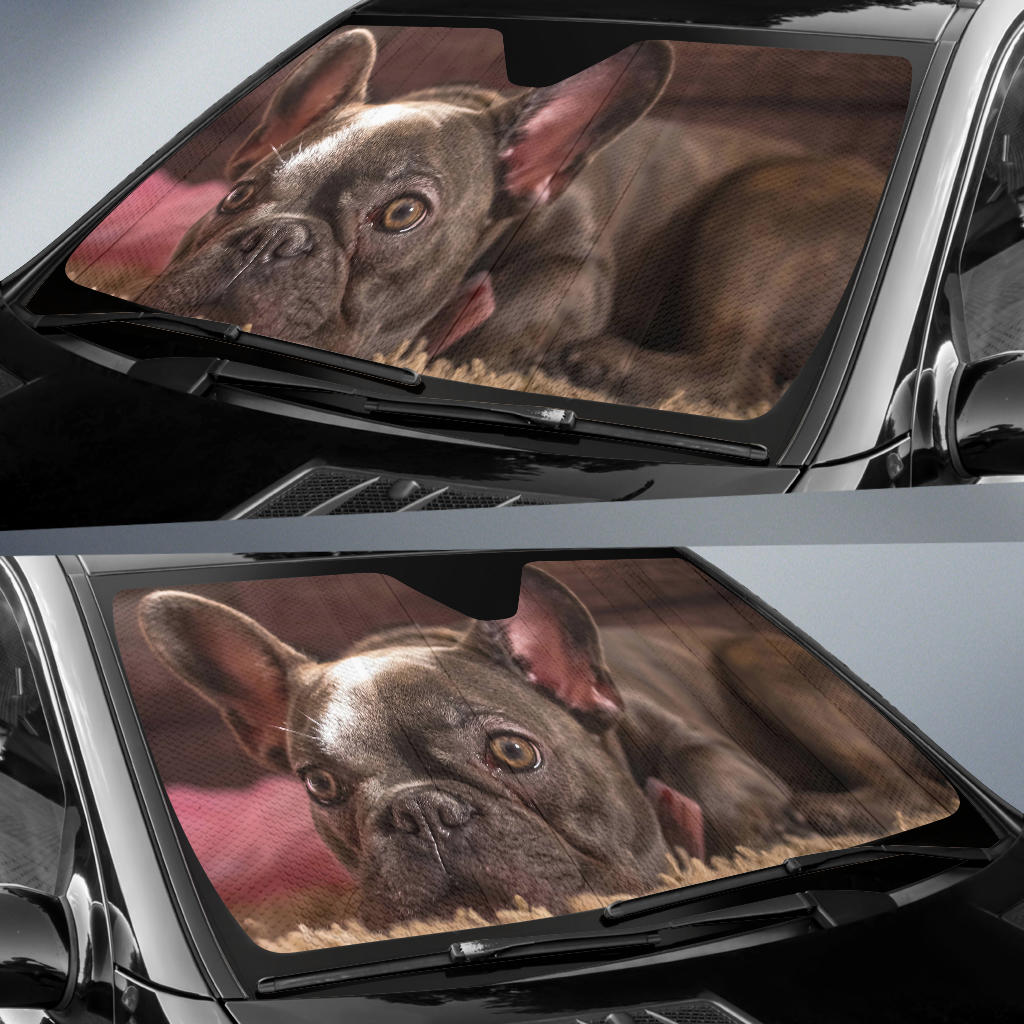Custom Auto Sun Shades - frenchie Shop