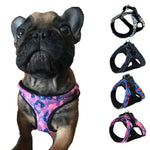 Adjustable No-Pull Frenchie Harness (WS91)