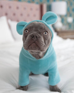 Not My Fault - Hoodie for Frenchie