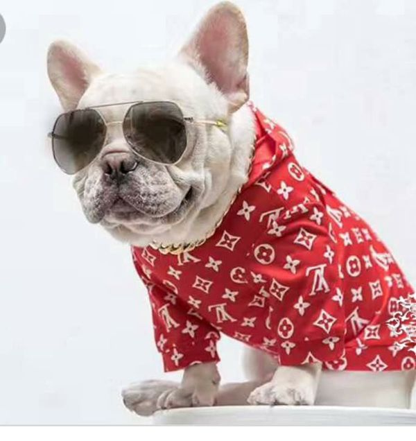 Supreme French Bulldog Hoodies
