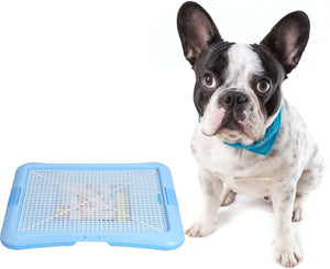 French Bulldog Training Toilet - frenchie Shop