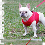 Breathable Harness for Summer (WS92) - Frenchie Bulldog Shop