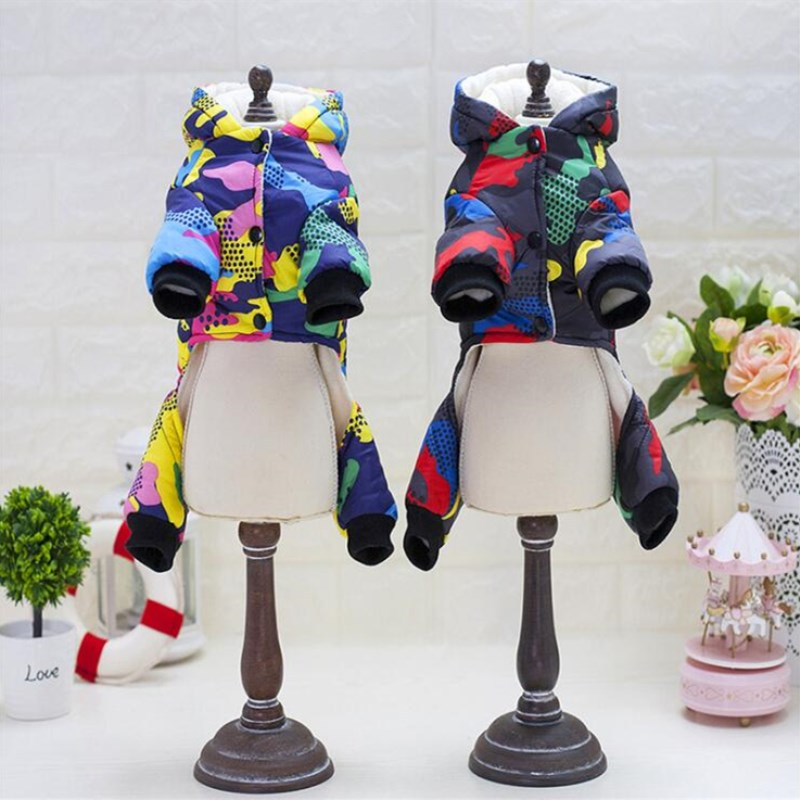 Colourful Coat (WS40) - Frenchie Bulldog Shop