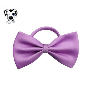 Fashion Tie  for dogs