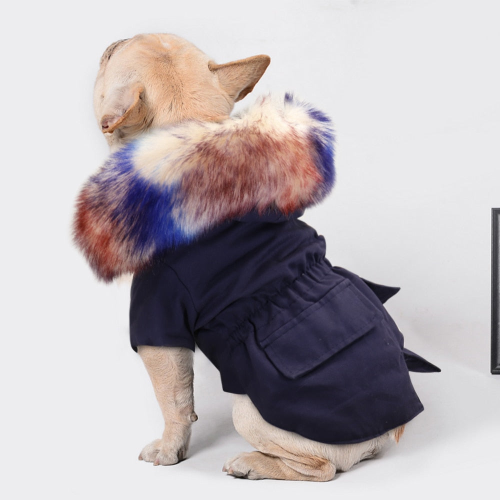 PawMax Coat V2 - French Bulldog Coat (WS46) - Frenchie Bulldog Shop
