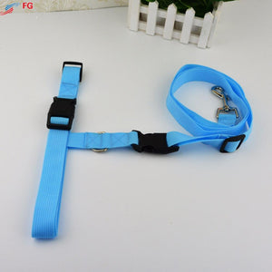 Leash Lead for  Running