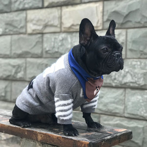 Knitted Winter Sweater for French Bulldog (WS313) - Frenchie Bulldog Shop