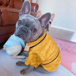 LV Pyjamas for Frenchies (WS103) - Frenchie Bulldog Shop