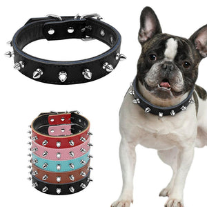 Adjustable Collars - frenchie Shop