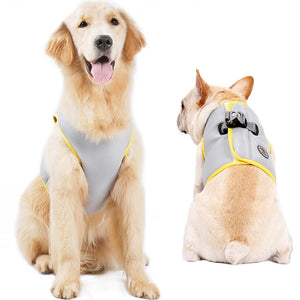 Coolify : Cooling Harness (CS21)
