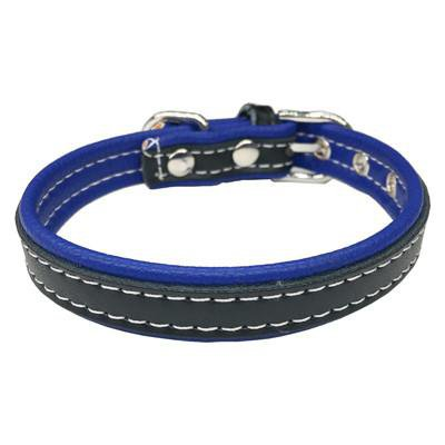 dog collars - frenchie Shop