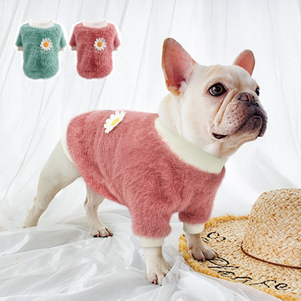 Lucie - French Bulldog Winter Clothes - Frenchie Bulldog Shop