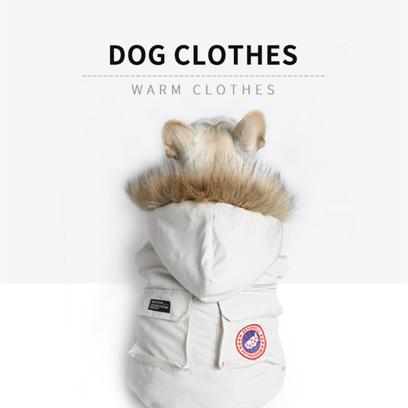Trendy Winter Clothes for French Bulldog (WS390) - Frenchie Bulldog Shop
