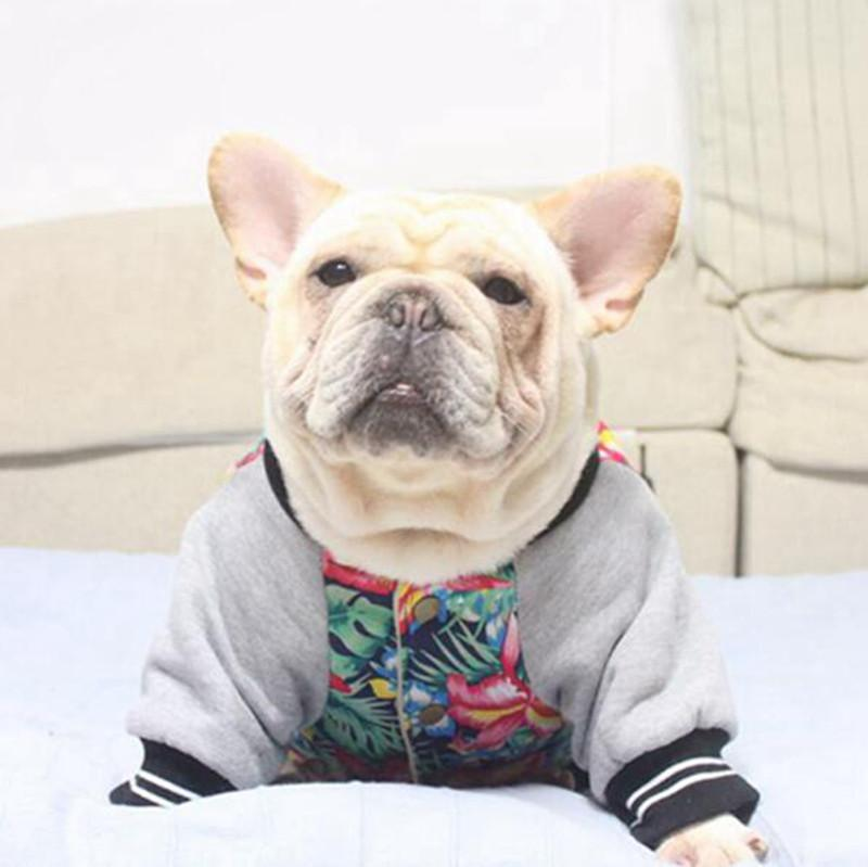 Cotton Hoodie for French Bulldog