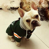 Hoodie for Pug ( Football team champion)