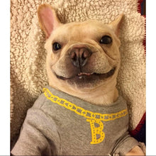 Golden Necklace - Hoodie  for frenchie