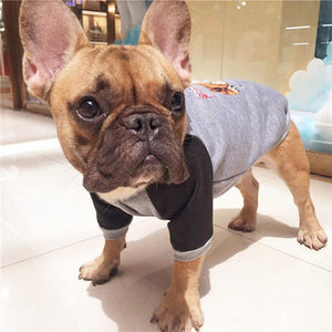 Hoodie for French Bulldog