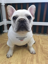 French Bulldog Shirt