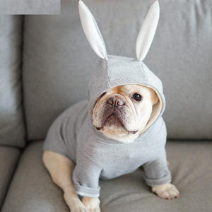 Rabbit Hoodie for French bulldog (WS9) - frenchie Shop