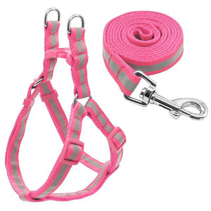 Reflective Frenchie Harness and Leash Set (WS58) - Frenchie Bulldog Shop