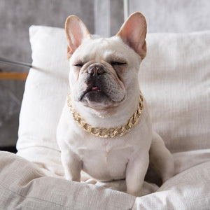 Adjustable  Necklace for frenchies