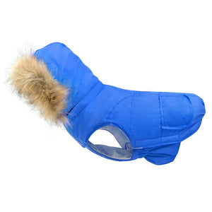 Waterproof Coat for french bulldog