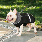 Warm Coat for frenchie (WS1) - frenchie Shop