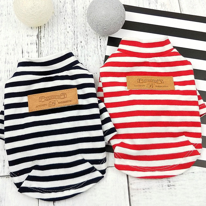 Striped shirt for Frenchie (WS100)