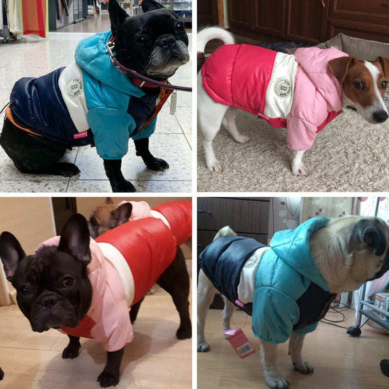 Molly Coat - Waterproof Coat (WS32) - frenchie Shop