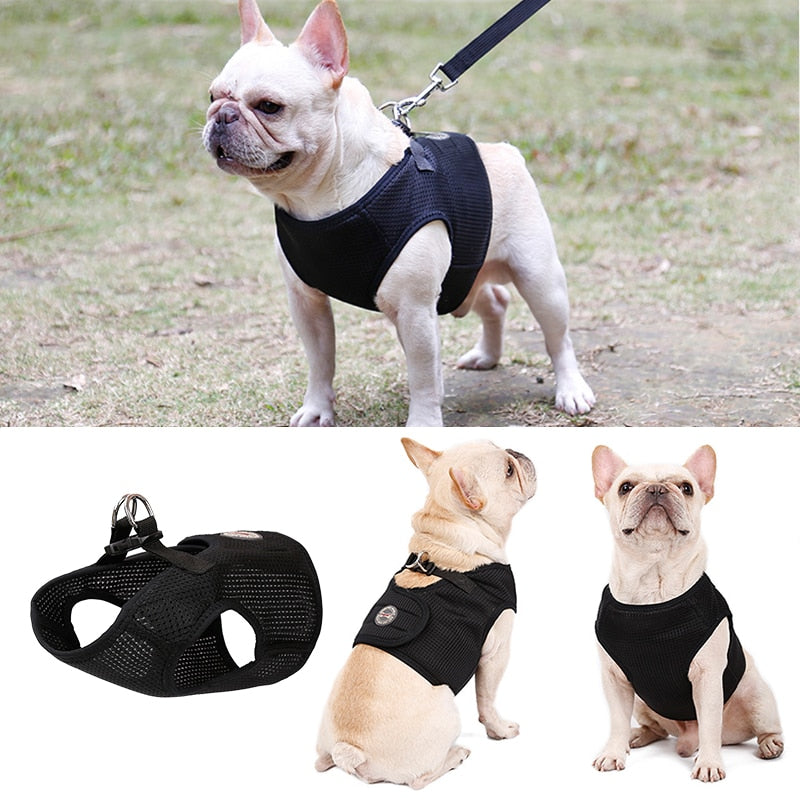 Breathable  Harness for Summer (WS92)