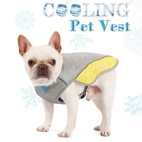 Coolify™ : Cooling Vest for Frenchie - frenchie Shop