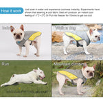 Coolify™ : Cooling Vest for Frenchie (CS13) - Frenchie Bulldog Shop