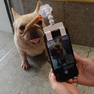 Frenchie Selfie Stick, Treat Holder - frenchie Shop