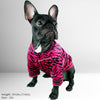 Oscar Jacket (WS49)- French Bulldog Jacket - Frenchie Bulldog Shop