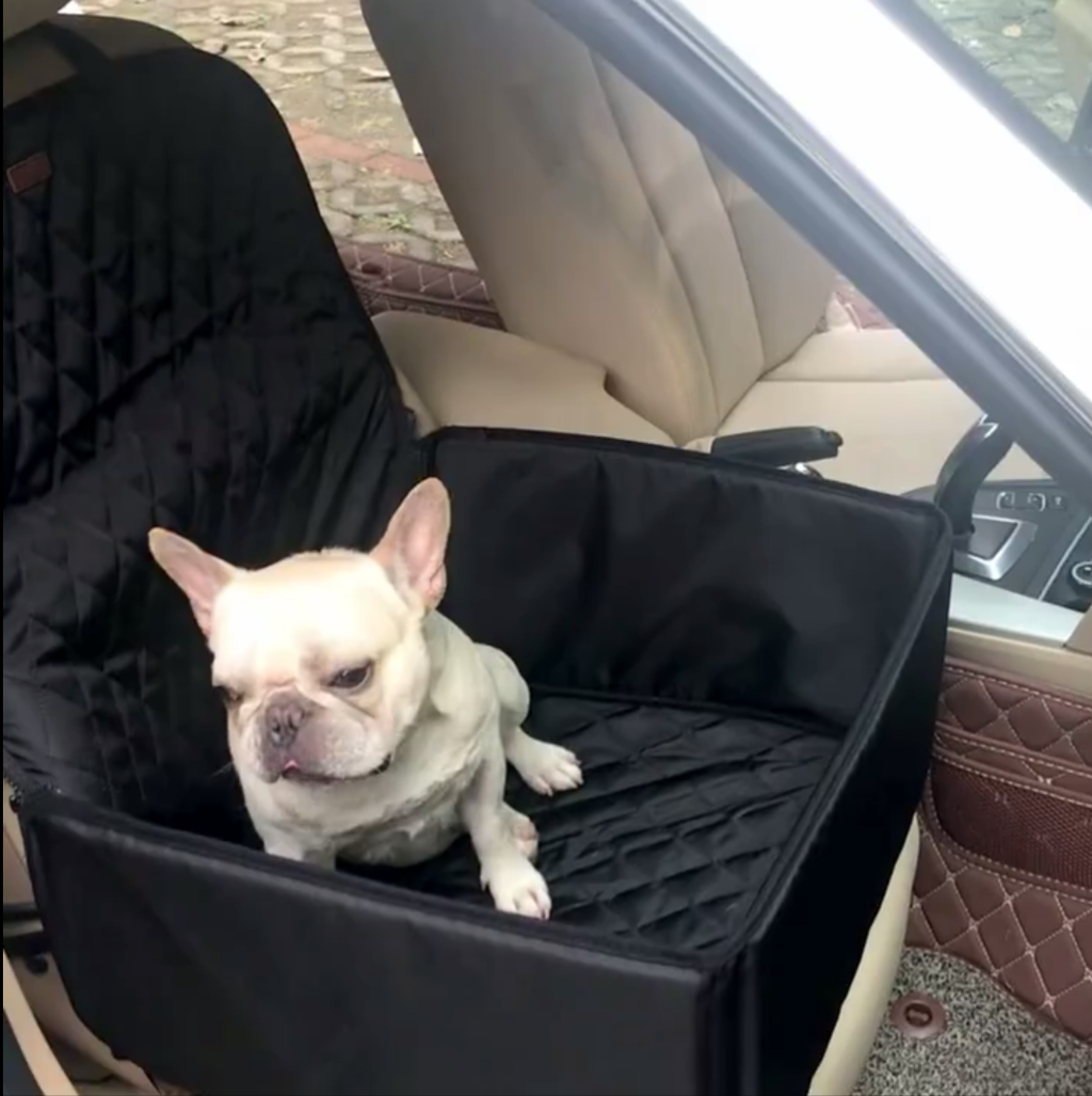 Waterproof Seat Cover V3 (WS67) - Frenchie Bulldog Shop