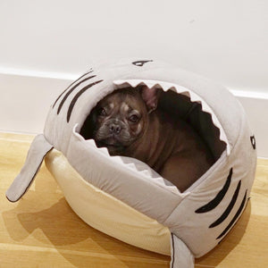 House for frenchie (shark Bed) (WS14) - Frenchie Bulldog Shop