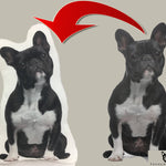 Custom 3D Frenchie Pillow - Frenchie Bulldog Shop