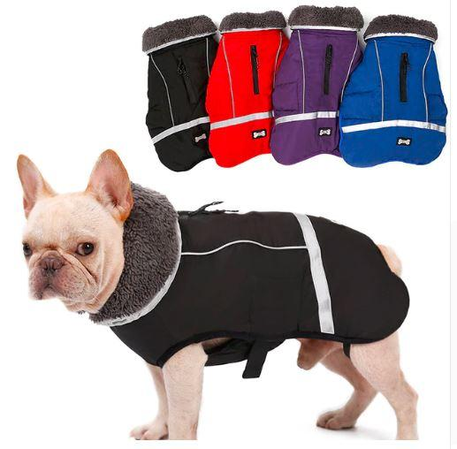 Warm Coat for frenchie [TM]