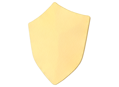 Warrior Shield-BLANK
