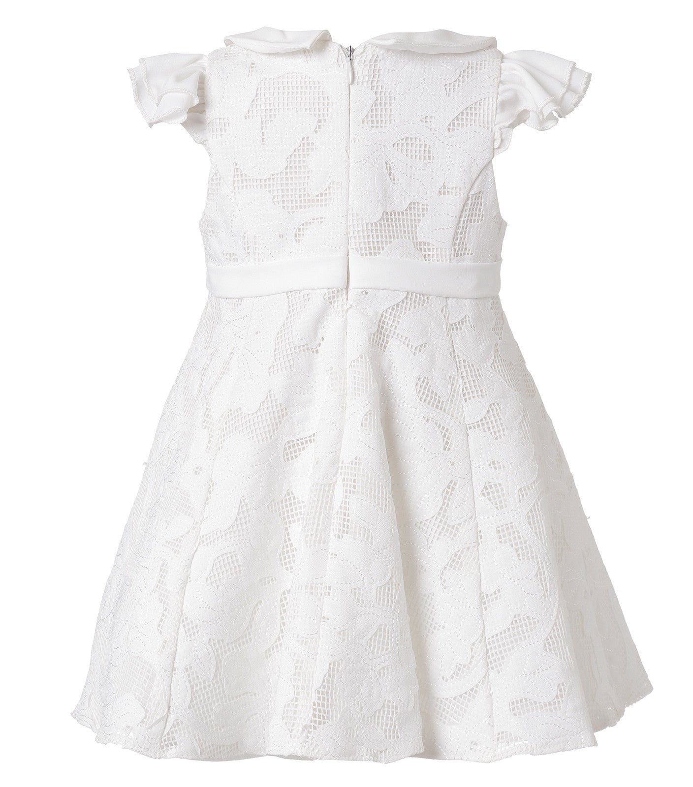 Baby Girl Floral Lace dress