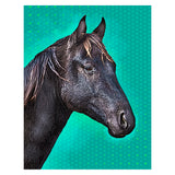 Poster Edged Portraits (Canvas)