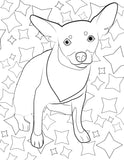 Rescue Coloring Books