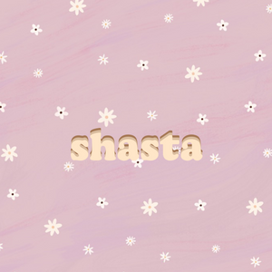 shasta adventure mat
